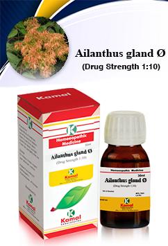 AILANTHUS GLAND Ø