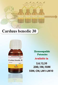 Carduus benedic