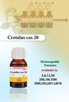 Crotalus cas