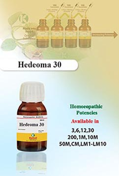 Hedeoma