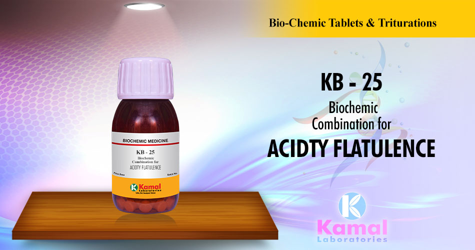 KB-25 (500gm Lactose base)