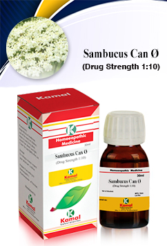 SAMBUCUS CAN Ø