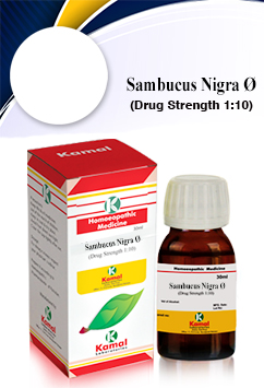 SAMBUCUS NIGRA Ø